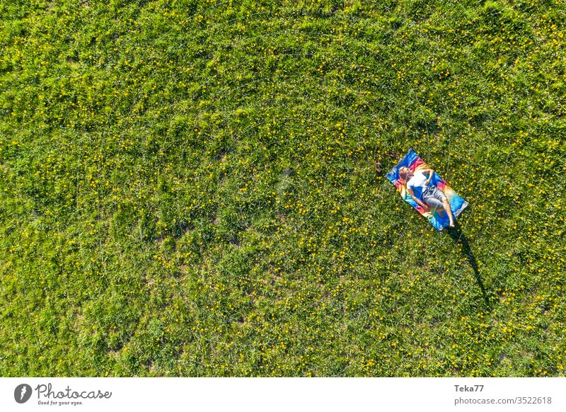 a woman chilling on a spring meadow from above woman from above woman relaxing relaxing on a meadow woman in spring woman sunbathing meadow background way air