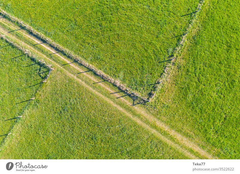 spring fields and fences from above fields from above animal fences agricultural agricultural way tractor tractor path field background meadow background air