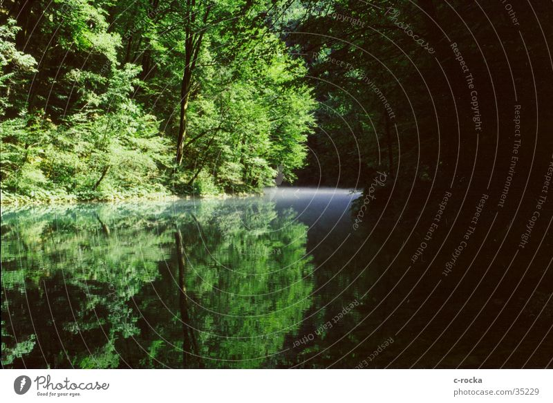 Water Green Fog River Mirror Environmental protection Source Croatia Primordial