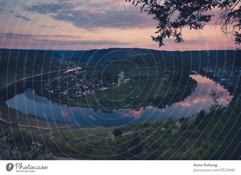 Moselle loop at dusk Mosel (wine-growing area) River Vacation & Travel Tourism Landscape Colour photo Wine growing Panorama (View) Rhineland-Palatinate