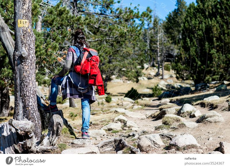 Rear view of a backpacker woman standing in a forest trail while looking away hiker contemplation tourism freedom person traveler pensive outdoor mountain 1