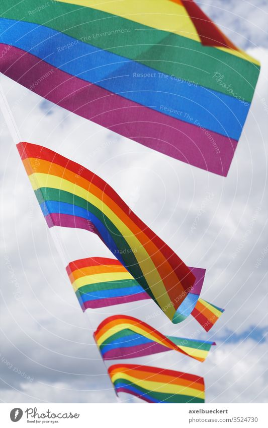 rainbow flags at gay pride event lgbt waving cloudy sky diversity human rights homosexual lifestyle lesbian bisexual symbol homosexuality equality banner