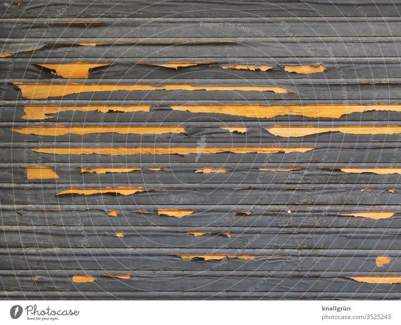 Old dark wooden roller shutter, where the colour peels off and light wood becomes visible Screening Flake off Weathered Layer of paint Structures and shapes
