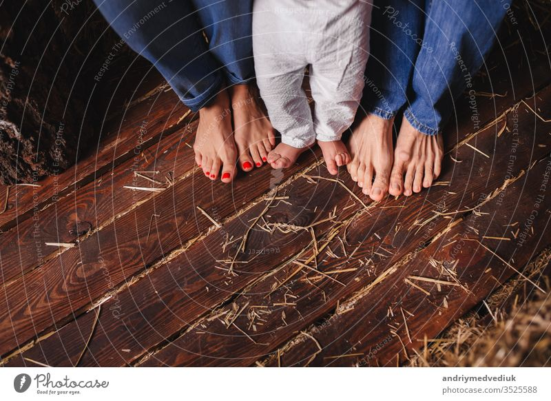 Bare feet of family members-mother, father and child. Wooden floor baby beautiful boy care caucasian childhood closeup concept cute foot happy health infant leg