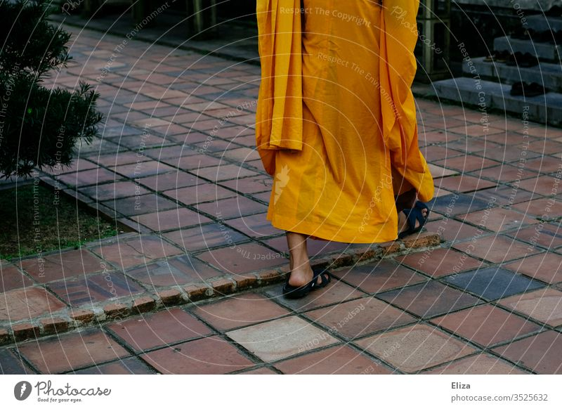 A Buddhist monk in traditional orange robe Monk Buddhism Religion and faith Asia Frock Monk's habit Ti-cîvara Orange Going foot Naked Sandals devout