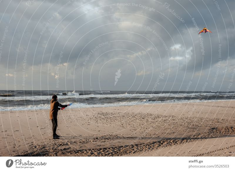 Man flying kites on the beach climb the kite Kite Gale Coast Beach Denmark Hvide Sands Young man North Sea North Sea coast Beach life Sandy beach Waves