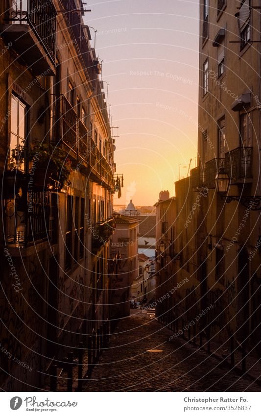 Sunset in the streets of Lisbon voyage Tourism Vacation & Travel Exterior shot Serene Destination Travel photography South Colour photo Card Romance Europe