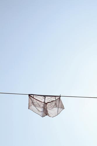 Charmingly she hangs there, close to the blue sky today. Laundry Delightful lingerie Sky Clothesline Dry Washing Washing day Household Clean Living or residing