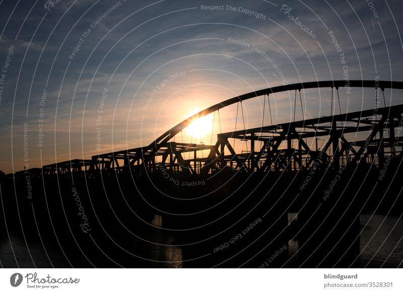 When the sun slowly sets behind two bridges over the Main. metal construction Bridge Car bridge Railroad bridge Back-light Contrast River Waterway car traffic