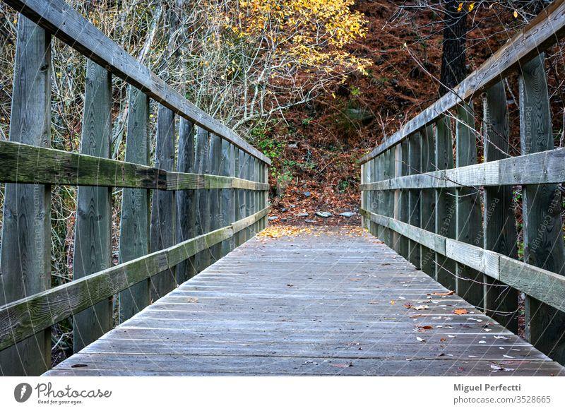 Puente de madera ,perspectiva de caminante landscape trees mountains mountains range autumn Sierra Nevada Granada colorful beautiful trekking path bridge river