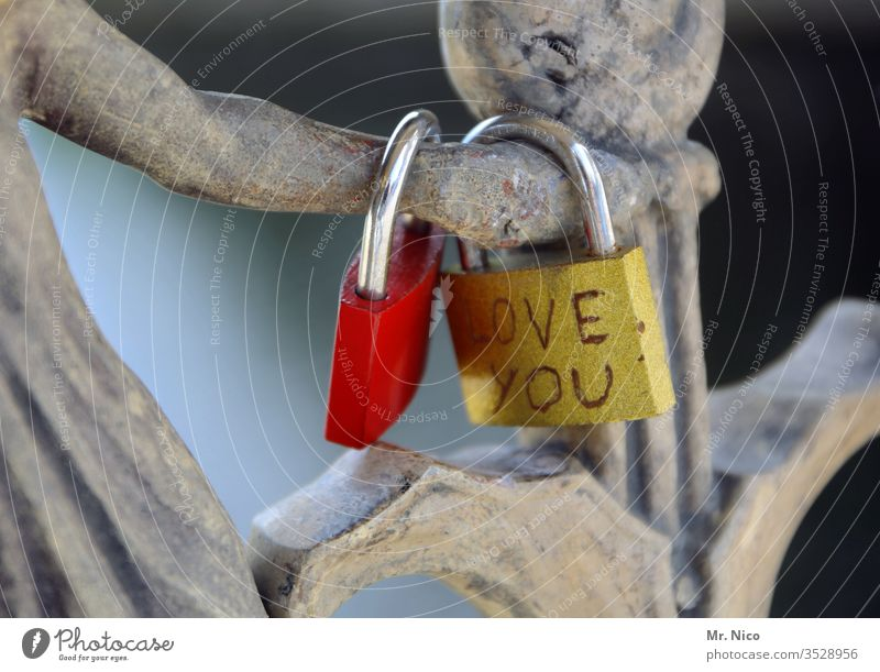 Love you Heart Emotions Red Romance Infatuation Sympathy Together Love padlock Loyalty Friendship Relationship Joie de vivre (Vitality) luck Day bridge
