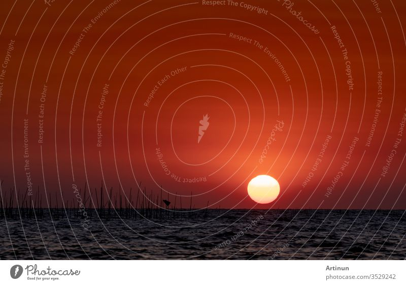 Big sun over the sea at sunset. Beautiful sunset sky and skyline. Red romantic sky for peaceful and tranquil background. Inspiration and quote background. Beauty in nature. Summer beach scene. Ocean.
