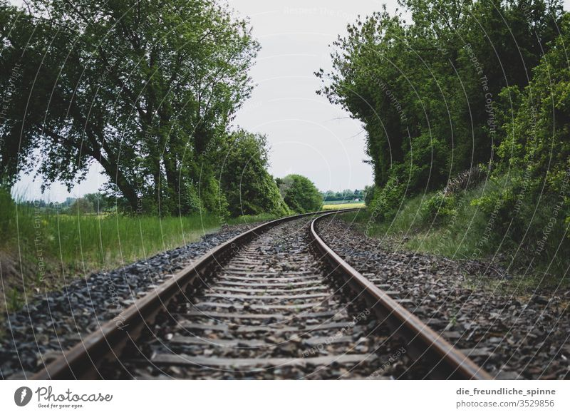 railway tracks rails Track off route Railroad Transport travel Trip Station Line voyage trees Train Movement Landscape Steel Far-off places Destination Tourism