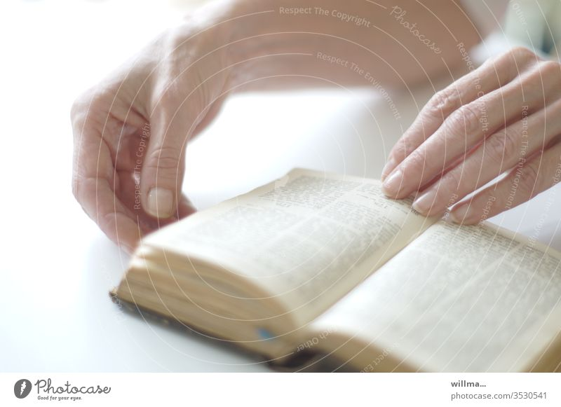 the manual to god | taken literally Book Bible hands Reading holy script Belief religion Christianity Purity