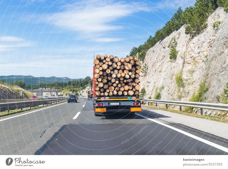 Truck carrying wood on motorway. truck timber transportation highway road forest log logging lorry industry tree heavy vehicle commodities equipment pine nature