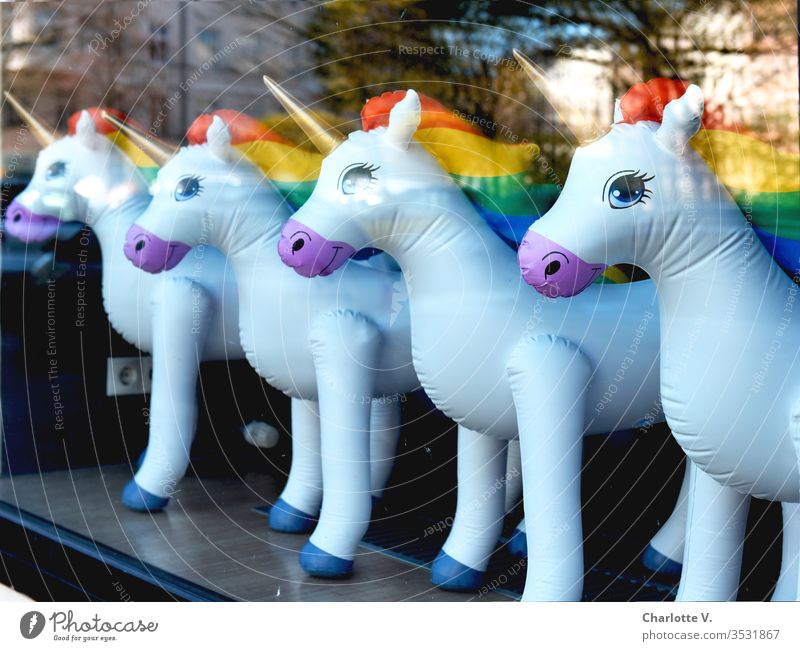 Unicorns   Inflatable unicorns with rainbow mane, lined up in a shop window. Reflections. Prismatic colors Golden Horn Shop window facade Rainbow reflections