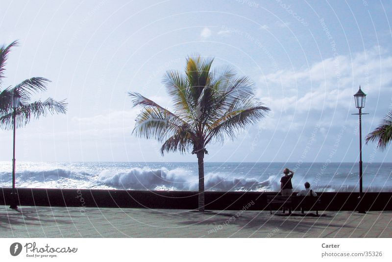 Human being Sky Ocean Summer Beach Far-off places Couple Waves Bench Palm tree Surf