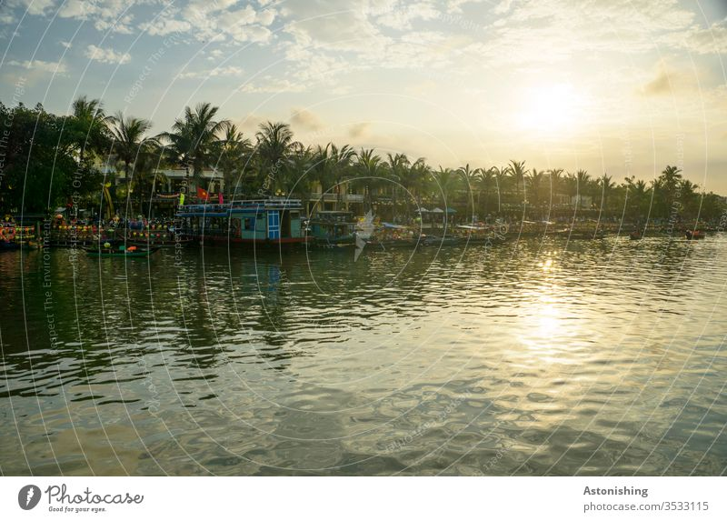 Evening in Hoi An at the Thu Bon River Vietnam Asia Sun palms reflection Nature Water Exterior shot Vacation & Travel Reflection Landscape Sky Tourism Sunset