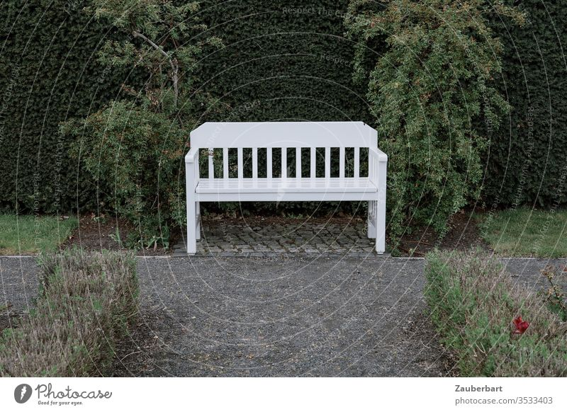 A quiet place - white bench between two bushes in a park Bench Park Garden bench off wax Lawn Castle grounds Oranienburg tranquillity rest Sit Sit down Break