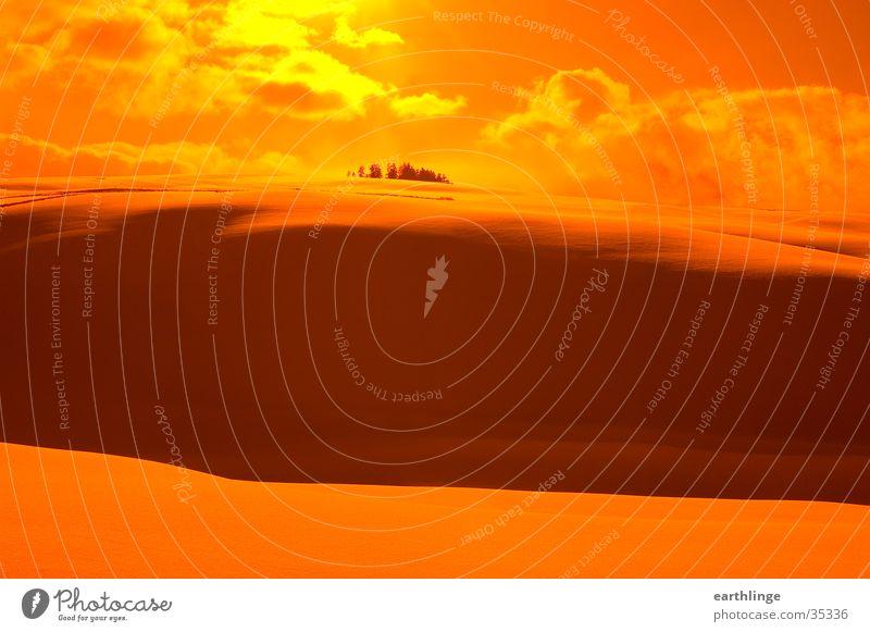 snowy desert Orange filter Back-light Clouds Winter Hill February Mountain Harz Snow Sun. orange Altenau Shadow