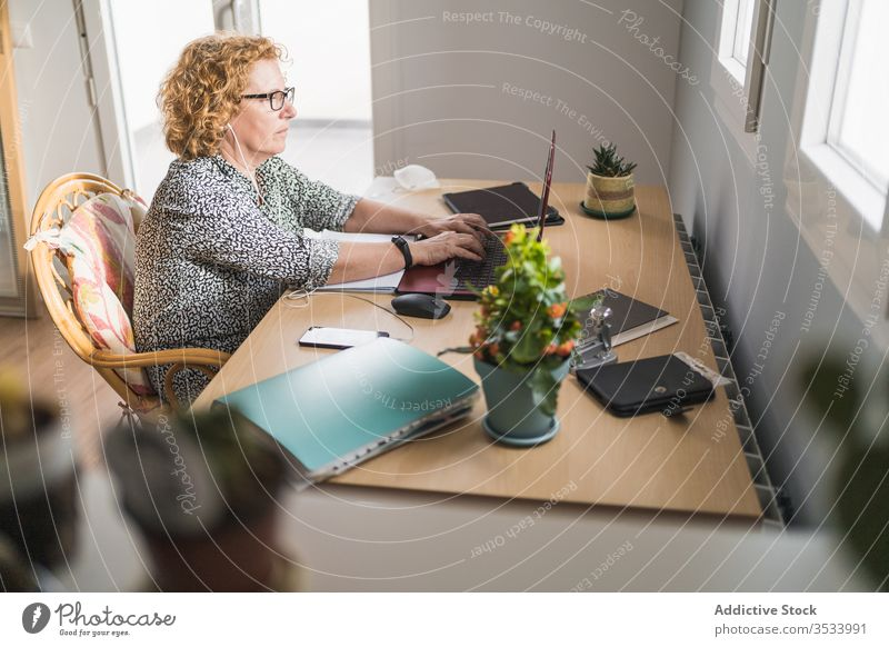 Adult woman working on laptop in room decorated with cactuses in pots plant using freelance home earphones internet remote distance business computer netbook