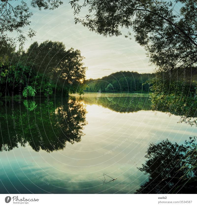 sun under Lake Lakeside Forest Sky Idyll huts Sunlight Sunset Surface of water Water reflection Reflection Peaceful windless wide Deserted Exterior shot Nature