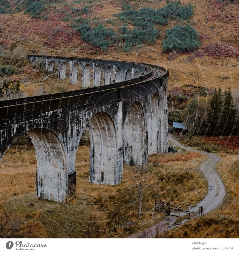 Viaduct in Scotland in autumn; film location Harry Potter movies Europe Great Britain Autumn Colour photo Exterior shot Nature Deserted Landscape Day