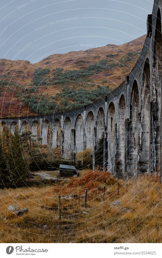 Viaduct in Scotland in autumn from below; film location Harry Potter movies Europe Great Britain Autumn Colour photo Exterior shot Nature Deserted Landscape Day