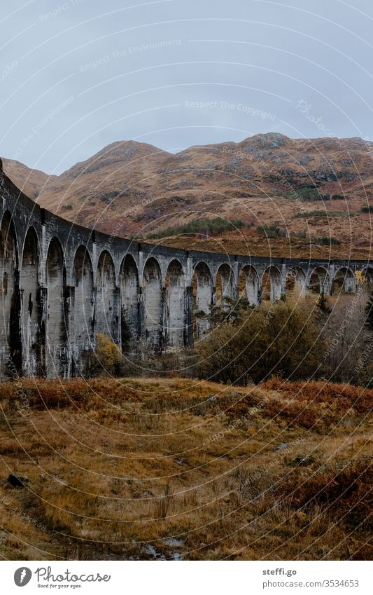 Viaduct in Scotland in autumn from below; film location Harry Potter movies; panorama Europe Great Britain Autumn Colour photo Exterior shot Nature Deserted