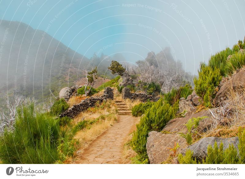 Hiking Towards Pico Ruivo in Madeira madeira portugal europe pico ruivo mountain hiking hiking trail mountain trail trekking sun blue sky fog foggy clouds