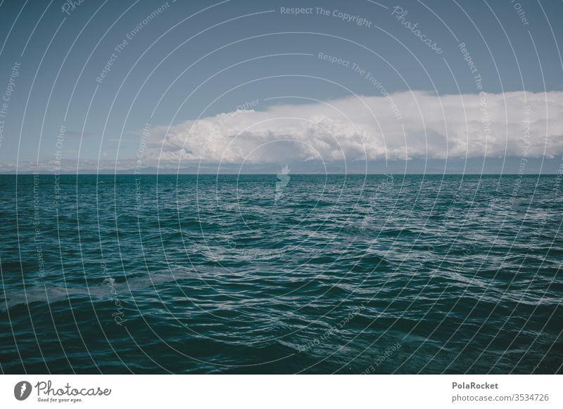 #As# Blue with horizon Horizon Ocean ocean Beautiful weather Vantage point Exterior shot Water Sky Nature Summer Coast Far-off places Panorama (View)