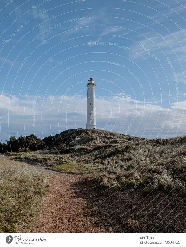 Lighthouse Lyngvig Fyr in the dunes of Hvide Sande Denmark Scandinavia Scandinavian Hvide Sands Vantage point Exterior shot North Sea Landscape