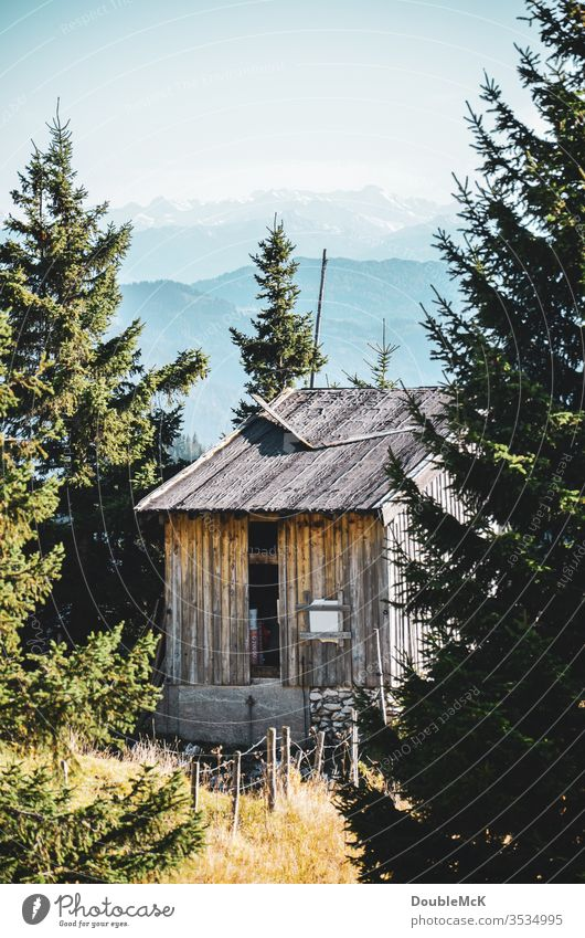 A deserted hut framed by fir trees with the Bavarian Alps in the background mountain Mountain Sky Blue Landscape Nature Exterior shot Colour photo Day