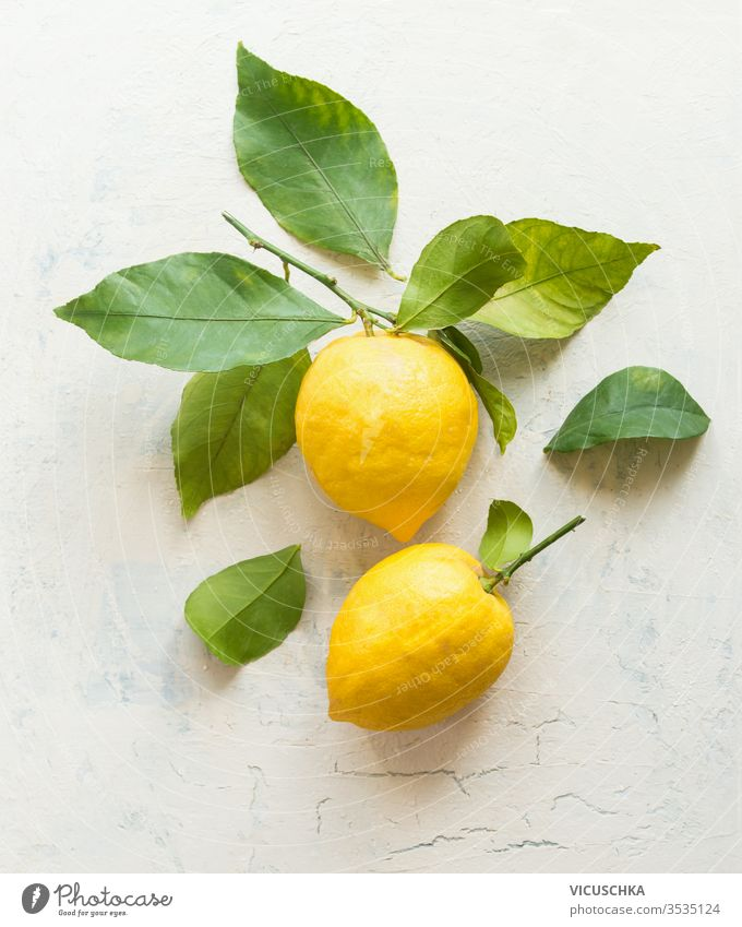 Ripe lemons with green leaves  composition on white desktop background , top view. Organic citrus fruits. Flat lay. Healthy food concept. ripe organic flat lay