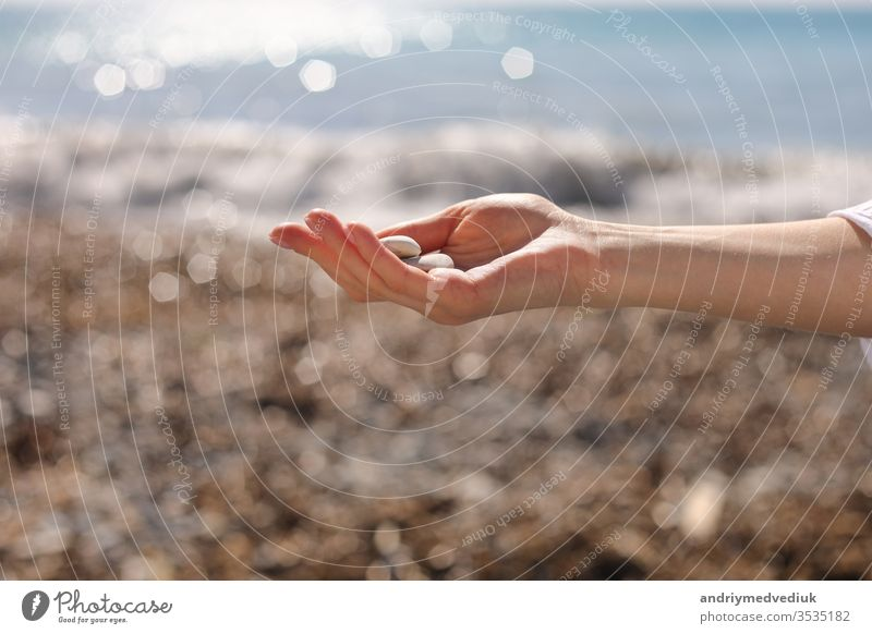 female hand holding small pebble stones in hand near blue sea on a beach background, picking up pebbles on the stone beach, round shape pebbles, summer vacation souvenir, beach day, selective focus