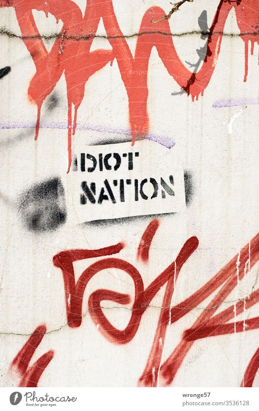 Idiot Nation - Graffito on a house wall spray Spray Colour Stencil technology Graffiti Wall (building) Colour photo Deserted Day Wall (barrier) Exterior shot