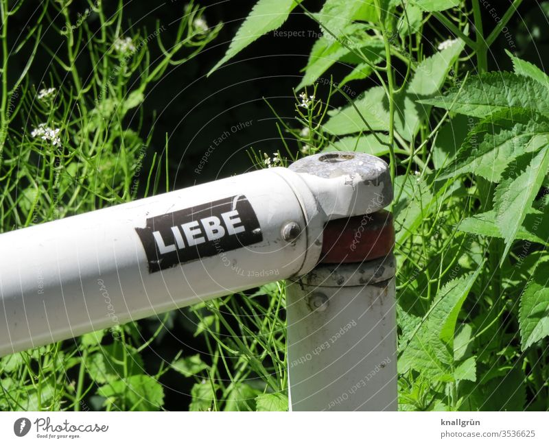 "Sticker ""Liebe"" on a barrier railing, green plants in the background Love stickers Signs and labeling Letters (alphabet) Word Characters Typography letter"