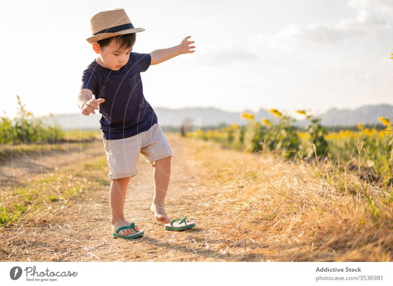 Happy little boy in green field cheerful sunflower excited nature carefree hat child smile joy childhood glad positive countryside freedom lifestyle adorable