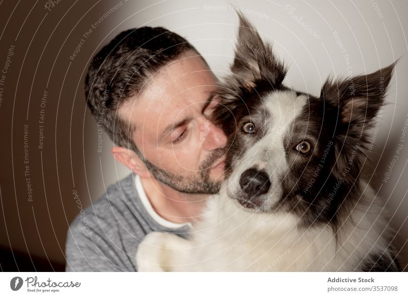 Bearded man spending time with adorable furry dog at home pet hug kiss best friend border collie together beloved animal happy leisure male purebred joy embrace