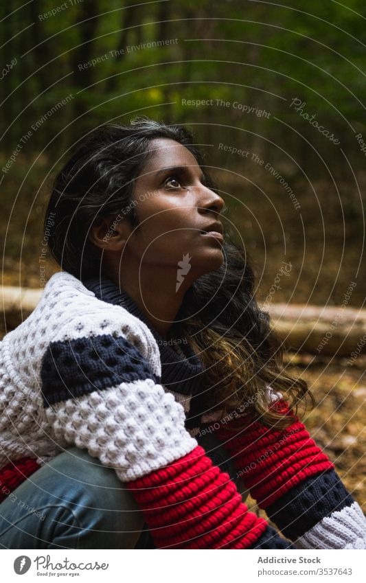 Calm Indian woman in autumn forest barefoot ground casual squat calm wood tranquil female ethnic indian hindu serene unemotional emotionless sweater jeans