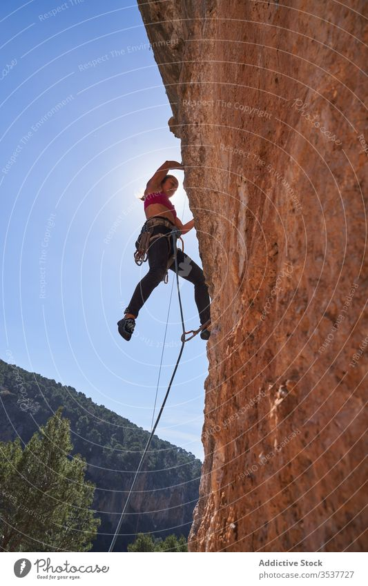 Strong female alpinist climbing up on rocky slope on sunny day woman rope equipment mountain extreme active adventure sport climber athlete activity nature