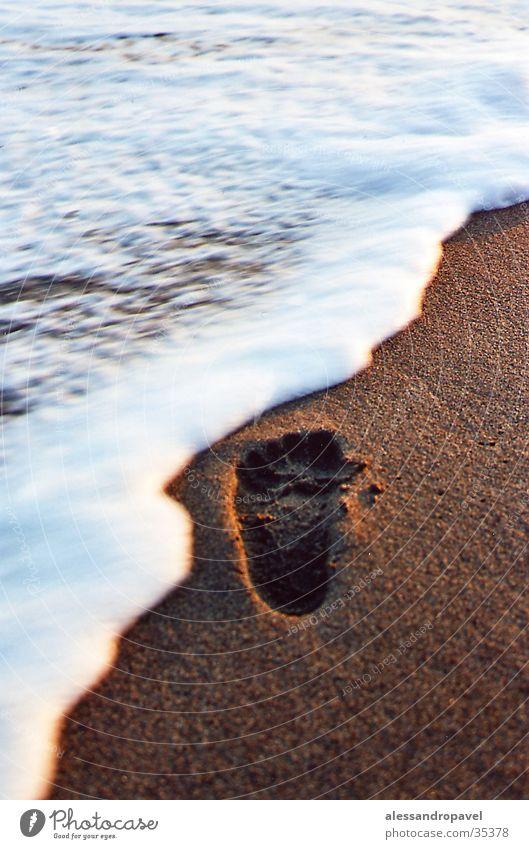Ocean Italy Footprint Tuscany Tracks
