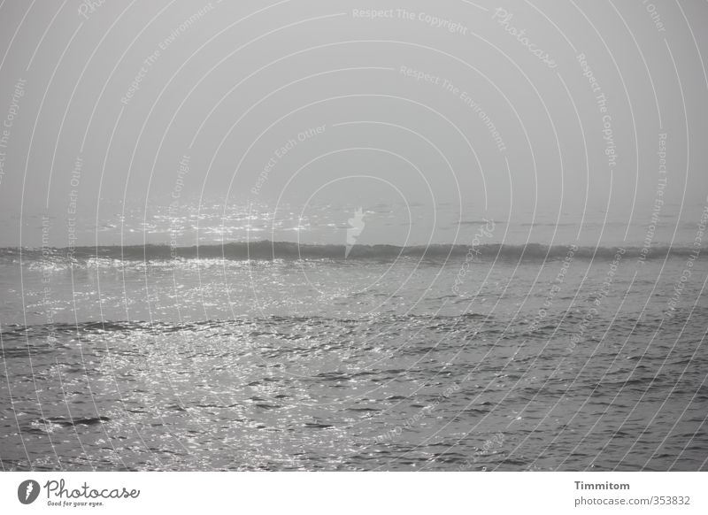 Sky Nature Vacation & Travel Water Ocean Calm Environment Emotions Coast Gray Natural Waves Fog Esthetic North Sea Denmark