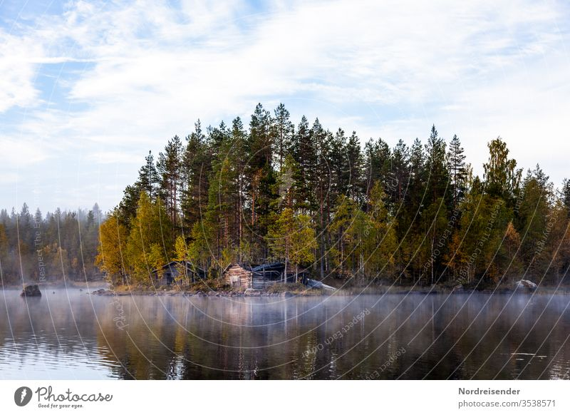 Swedish forests with fog in autumn Wide angle Panorama (View) Reflection Contrast Day Copy Space bottom Deserted Exterior shot Colour photo Calm Idyll