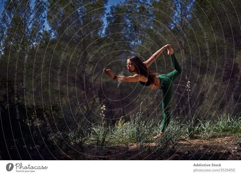 Fit athlete practices yoga in forest woman sportswear position exercise fitness balance swallow harmony stand pose morning slim healthy wellness sunny outdoors