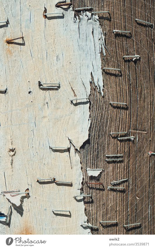 Forgotten messages Wall (building) wood Old Wood grain Structures and shapes Exterior shot Deserted Wooden board Brown Pattern Close-up Detail Day Sunlight