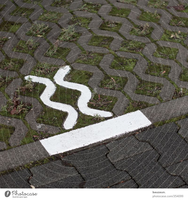 xx|. Garden Grass Moss Parking lot Motoring Street Lanes & trails lawn lattice grass paver Paving stone Stone Concrete Sign Signs and labeling Road sign Driving