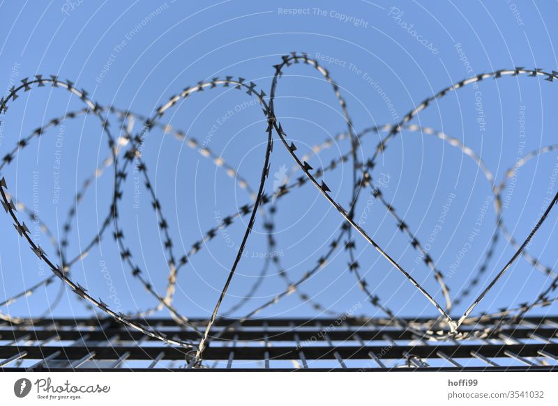"Barbed wire in front of a blue sky Barbed wire fence"" NATO wire Wire netting fence Barrier Border Penitentiary Metal Protection Fence Bans Torture captivity"