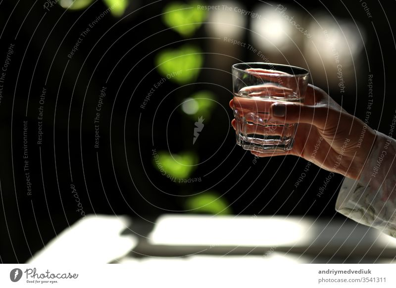 Woman hands isolated, holding a glass of water on a dark background with green leaves. the sun's rays fall on the glass. healthy morning drink natural life