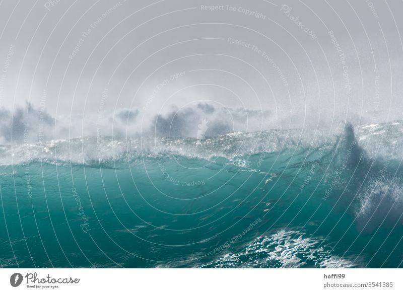 fat wave in the Atlantic breaks with strong spray - summer ! Surf Waves Ocean turquoise Esthetic Water Fluid Strong Energy Fresh Cabo Verde Sun Bright Maritime